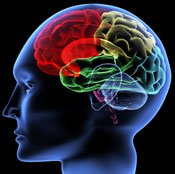 Let our Austin brain injury lawyers protect your rights
